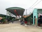 """Thanh Hóa: Đề xuất Chủ tịch tỉnh xử lý cán bộ để mọc chợ """"chui"""", hoạt động không phép"""