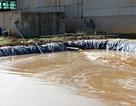 """Nhiều cơ sở chế biến nông, lâm sản là """"thủ phạm"""" gây ô nhiễm môi trường"""