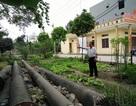 Thanh Hóa: Đất mua hơn 20 năm vẫn không được xây nhà