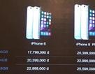 FPT phân phối iPhone 6 chính hãng giá 17,8 triệu đồng
