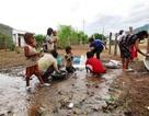 Những trận mưa lớn tưới mát vùng hạn hán kỷ lục