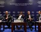 Diễn đàn kinh tế thế giới tại Hà Nội ra mắt Hội đồng kinh doanh ASEAN
