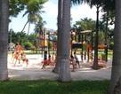 Đà Nẵng sẽ có thêm nhiều công viên
