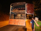 Phát hiện xe tải chở gần 500kg chân và đuôi bò thối