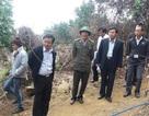 Cách chức Hạt trưởng, Hạt phó kiểm lâm trong vụ phá rừng Sơn Trà