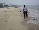 Cá chết tiếp tục dạt vào bờ biển Đà Nẵng