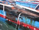 Tàu cá bị tàu nước ngoài đâm chìm, 5 ngư dân được cứu