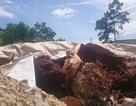 Vụ chôn lấp chất thải ở Đà Nẵng: Không phải chất thải của Formosa