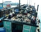 Sự thật thông tin Trung tâm cứu nạn không cử tàu đi cứu ngư dân gặp nạn