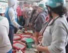 Khởi động kế hoạch ngăn ngừa ô nhiễm tại điểm nóng Âu thuyền, Thọ Quang