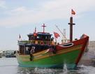 Hạ thủy tàu dịch vụ hậu cần nghề cá