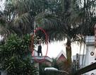 Nam thanh niên bịt mặt cầm hung khí leo trèo trên nóc nhà