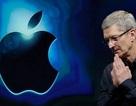 CEO Apple được trả lương cao nhất tại Mỹ