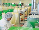 Doanh nghiệp châu Âu gia tăng niềm tin kinh doanh tại Việt Nam
