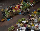 """Việt Nam sẽ trở thành """"con hổ"""" của nền kinh tế châu Á"""