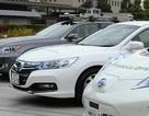 Nhật Bản lo sợ tụt hậu ở phân khúc xe tự lái