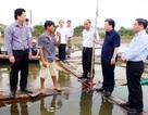 Bộ KH&CN: Tránh những nhận định thiếu căn cứ về tình trạng cá chết