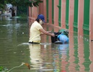Mùa mưa lũ đề phòng các bệnh về da