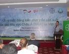 Ngành lúa gạo Việt Nam: Cơ hội phát triển từ những dự án hợp tác