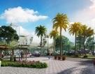 Nhìn, chạm và sống giữa thiên đường xanh tại Park View