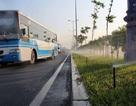 TPHCM tiên phong áp dụng công nghệ tưới tự động chăm sóc mảng xanh đô thị