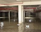 Tầng hầm chung cư ngập 1,5 mét, hàng trăm hộ dân chịu cảnh mất điện, nước