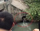 TPHCM: Giải cứu cô gái chui vào cống nước thải, lấy đá tự đập đầu