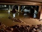 Vỡ tường hầm chung cư, hàng trăm mét khối bùn vùi lấp 20 xe máy