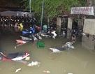 Hơn 1.000 xe máy bị nhấn chìm trong hầm sâu 2 mét giữa Sài Gòn