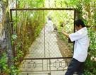 Đòi hàng xóm dỡ hàng rào cho nhà mình có đường đi