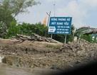 Đề nghị truy tố Trưởng Ban quản lý rừng phòng hộ Năm Căn