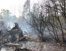 Hỏa hoạn lớn thiêu rụi 10 căn nhà
