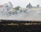 45.000 m2 ruộng bốc hỏa, cả khu dân cư hoảng loạn