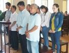 8 cựu cán bộ, nhân viên Ngân hàng Việt Á chi nhánh Bạc Liêu lĩnh án
