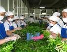 An toàn thực phẩm: Cần phải có chế tài xử phạt hành vi quản lý tắc trách