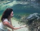 Thót tim người mẫu xinh đẹp mạo hiểm bơi cùng cá sấu khổng lồ