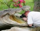 Bật cười trước những khoảnh khắc hài hước của các nhiếp ảnh gia