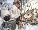 Theo chân thợ săn chó sói ở nơi lạnh nhất thế giới