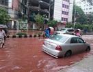 Đường phố Bangladesh nhuộm đỏ màu máu sau lễ hiến tế
