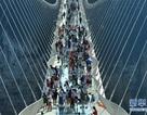 Cầu đáy kính dài và cao nhất thế giới bất ngờ mở cửa trở lại