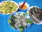 Mùa nước nổi - Mùa cá linh về tại ĐBSCL