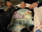 Khách Trung Quốc giấu hơn 1 triệu Euro trong hành lý