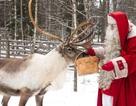 Đến thăm quê hương của ông già Noel