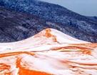 Cảnh tượng hy hữu khi tuyết rơi trên... sa mạc Sahara