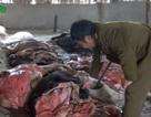 Hà Nội: Đột nhập lò chế biến da trâu bò, mỡ bẩn
