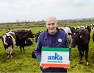 Chuyện người vắt sữa bò xứ Ireland