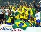 Tuyển các ngôi sao Brazil sẽ sang Việt Nam vào tháng 4/2016
