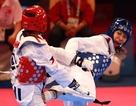 Taekwondo Việt Nam không giành nổi suất nào đến Olympic 2016