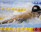 Siêu kình ngư của Singapore có thông số tốt hơn cả Michael Phelps