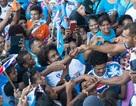 Cả nước Fiji ra đường đón đội tuyển Rugby giành HCV Olympic 2016 trở về